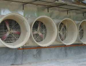 adinter_ro_ventilatie avicultura 3