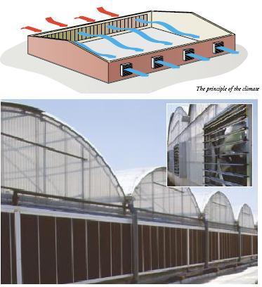 cooling principle greenhouse